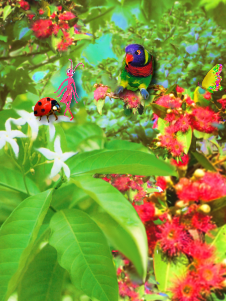 Little Pink Ant, lady bird, parrot, butterfly